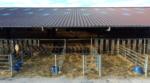 stabulations centre equestre haras de la bleiche ergersheim bas rhin