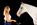 photographie-art-cheval-fond-noir-laure-apache-equitation-thomas-stoehr-photographe-equin